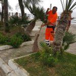 manutenzione verde pubblico maiori