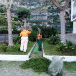 manutenzione verde maiori