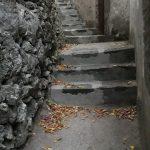 spazzamento strade maiori
