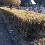 Cimitero di Maiori in data 13 agosto