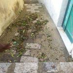 Erchie spazzamento pulizia