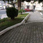 Maiori manutenzione verde pubblico