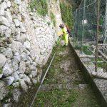 Taglio, spazzamento e pulizia Sentiero dei limoni