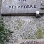 Spazzamento e pulizia presso frazione Vecite: