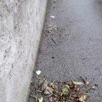 Spazzamento e pulizia in via Santa Caterina, via Sepetito, vicolo Maio, vicolo Sarno e frazione San Pietro