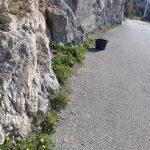 Taglio e spazzamento località Miramare