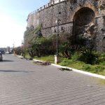 Manutenzione del Verde Pubblico al Porto Turistico