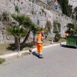 Taglio e potatura zona Porto