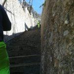 Taglio e spazzamento in località Torre