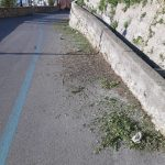 Taglio e spazzamento rotabile strada di Torre