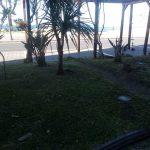 aglio piante giardino antistante Banco di Napoli e taglio siepe presso la rotonda sul lungomare