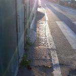Taglio e spazzamento in via Olmo