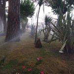 Attività di irrigazione giardinetti presso lungomare e villa comunale