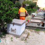 Pulizia al cimitero comunale
