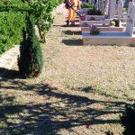 Spazzamento e taglio fino alla statale e potatura fiori e piante Cimitero Comunale