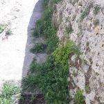 Taglio e spazzamento presso via Lecina