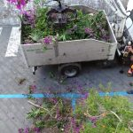 Erchie manutenzione del verde