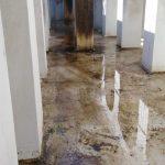 Pulizia vasca Villa Comunale