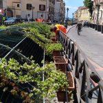 Sistemazione vasi su Corso Reginna