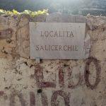 Taglio e spazzamento in località Salicerchie