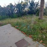 completato taglio erba nelle palazzine di Via G.Capone
