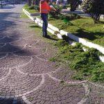 Maiori taglio aiuole lungomare dopo l'irrigazione
