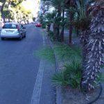 Manutenzione del verde zona antistante hotel Panorama Maiori