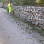 Minori taglio e spazzamento presso strada rotabile e Torre