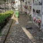 Pulizia presso Cimitero comunale Maiori
