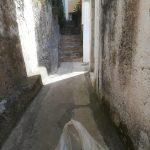 Spazzamento e pulizia in via Petrito Minori