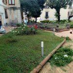 Taglio e sfoltitura piante di rose in villa comunale