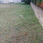 Taglio erba effettuato presso palazzine in via G.Capone Maiori