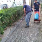 Maiori manutenzione Cimitero Comunale