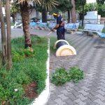 Maiori manutenzione del verde e irrigazione