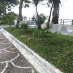 Maiori manutenzione del verde e irrigazione lungomare