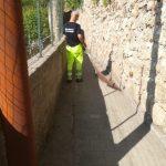 Minori attività di spazzamento località Villamena e rotabile Cimitero Comunale con recupero di abbandoni 13