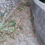 Conca dei Marini taglio e spazzamento e rimozione di detriti in Via Pali