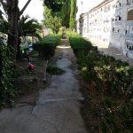 Maiori Taglio erba sottostante alle siepi e lavaggio viali del Cimitero Comunale nonché riassetto bidoni