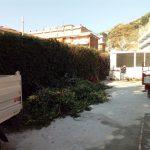 Maiori manutenzione del verde presso Scuola Via Capitolo