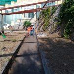 Maiori pulizia nelle scuole e irrigazione