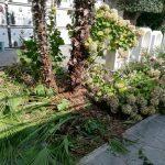 Praiano potatura e spazzamento Cimitero