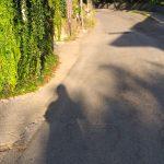 Tramonti taglio e spazzamento presso frazione Pietre