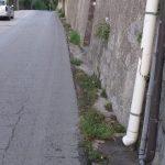 Tramonti taglio e spazzamento località Polvica